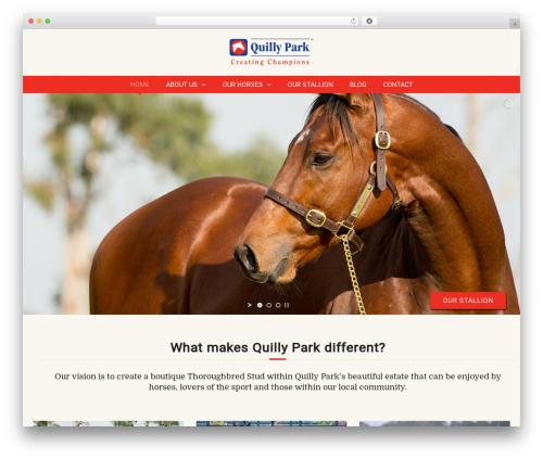 WordPress curly-extension plugin - quillypark.com.au