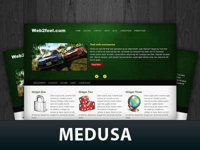 Medusa WordPress theme