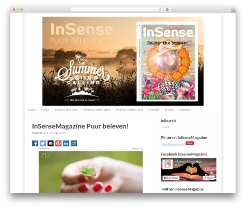 WordPress my-pinterest-badge plugin - insensemagazine.nl