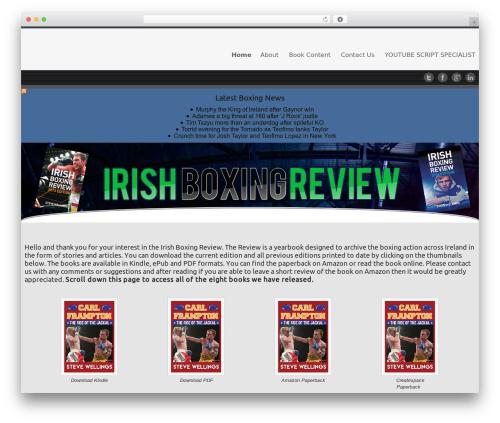 Celestial - Lite best free WordPress theme - irishboxingreview.com