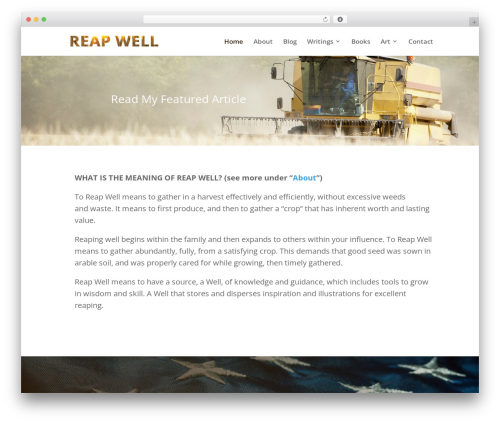 WordPress theme Divi - reapwell.com