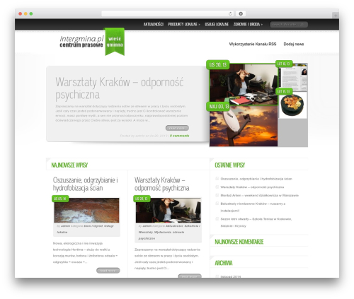 Best WordPress template Delicate News - intergmina.pl