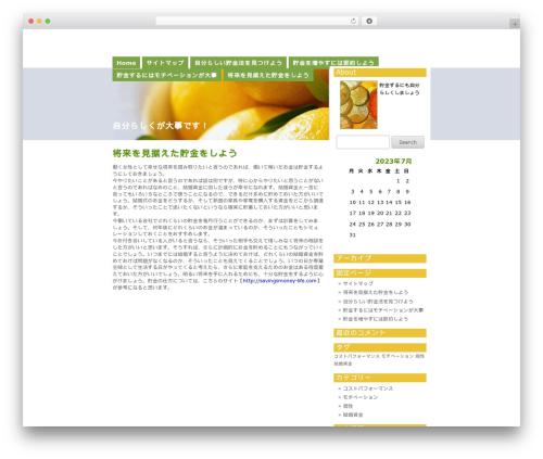 Citrus Mix WordPress website template - it-hal.com