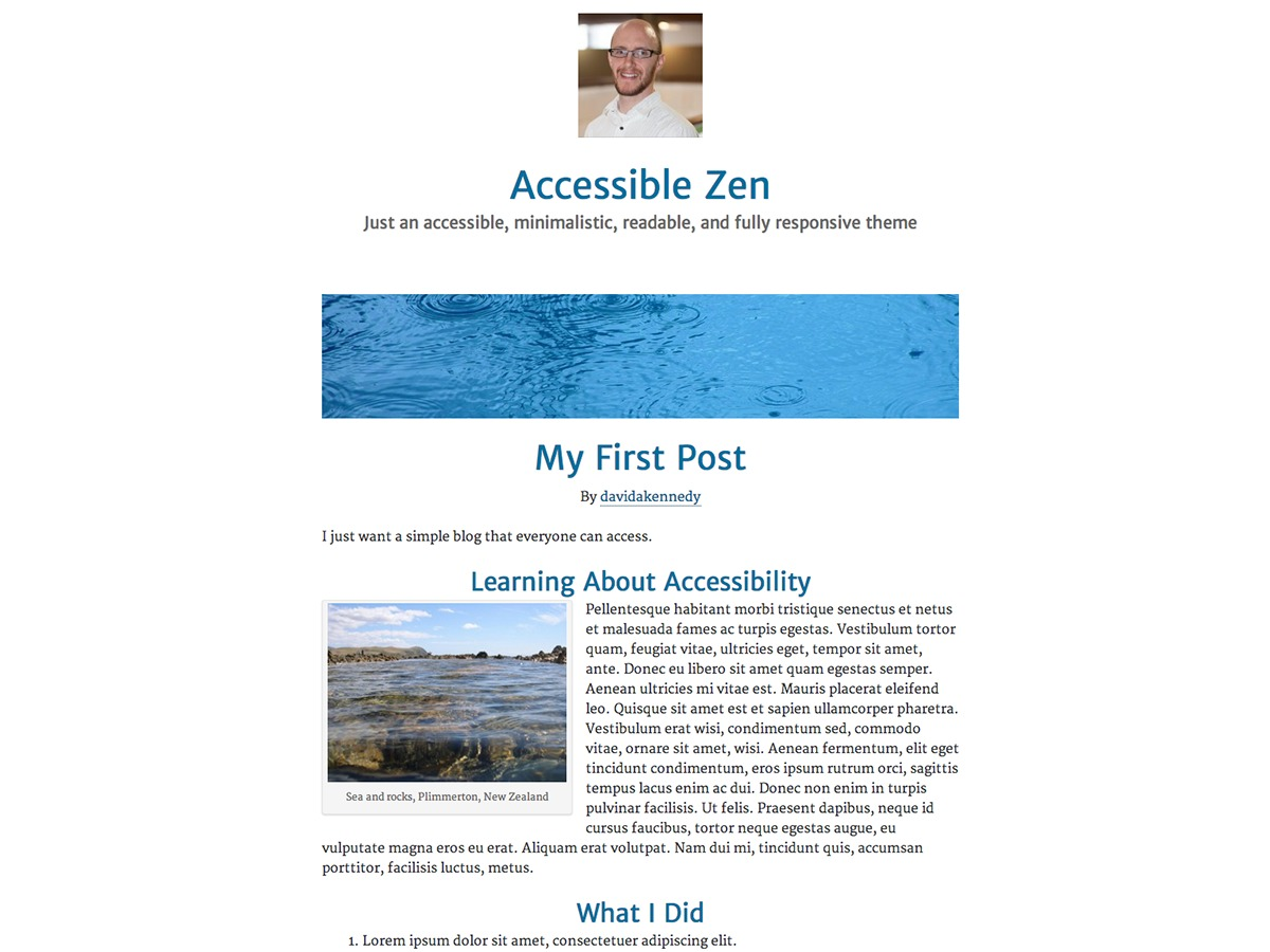 Accessible Zen best free WordPress theme