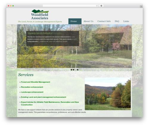 Best WordPress theme Baris - woodfieldassoc.com