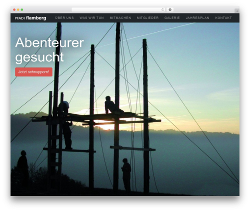 flamberg14 WordPress theme - flamberg.ch