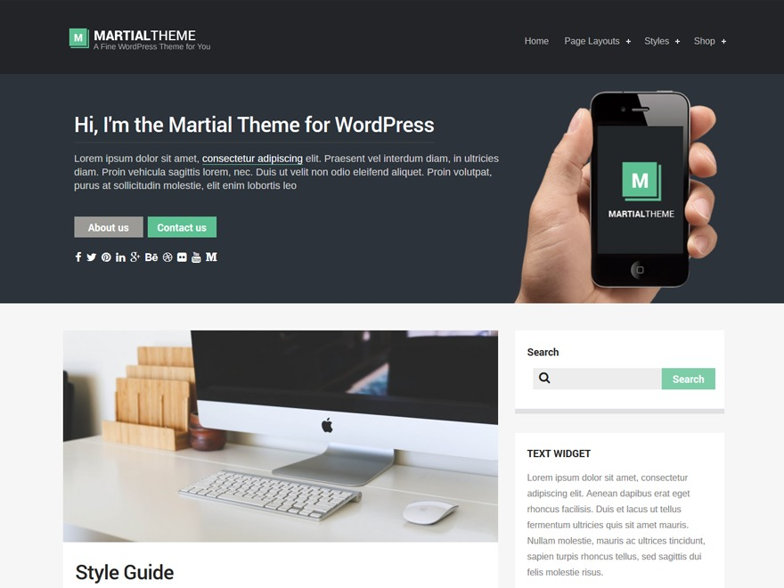 Martial Lite free WordPress theme