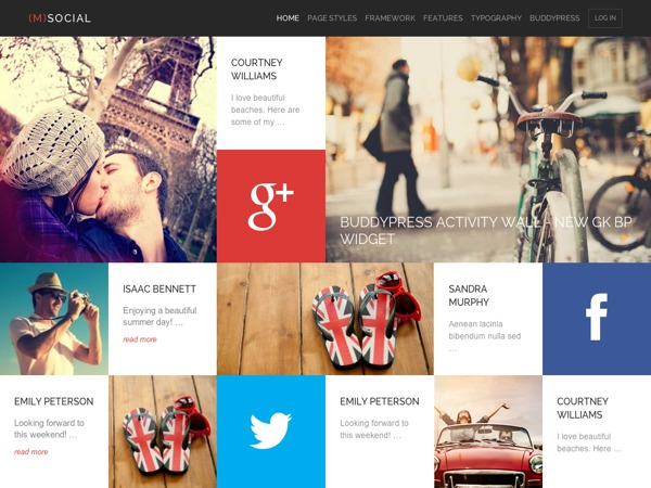 Msocial business WordPress theme