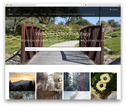 Stocky WordPress gallery theme - worldofziggy.com