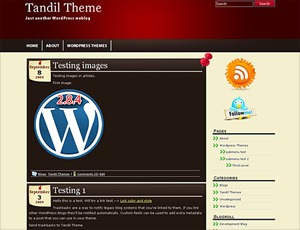 Tandil WordPress theme