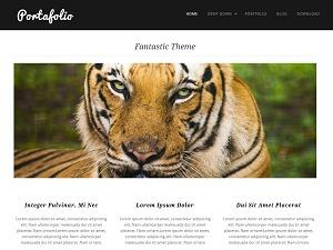 Template WordPress Portafolio