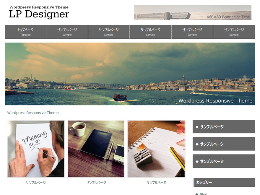 LP_Designer_2CR_Biz_v2.0 WordPress theme design