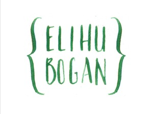 WordPress website template Client