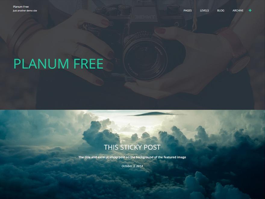 WordPress website template Planum Child