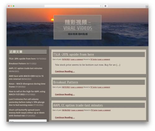 Blog Fever WordPress theme design - i2020i.com