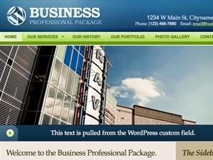 Business Professional Package company WordPress theme