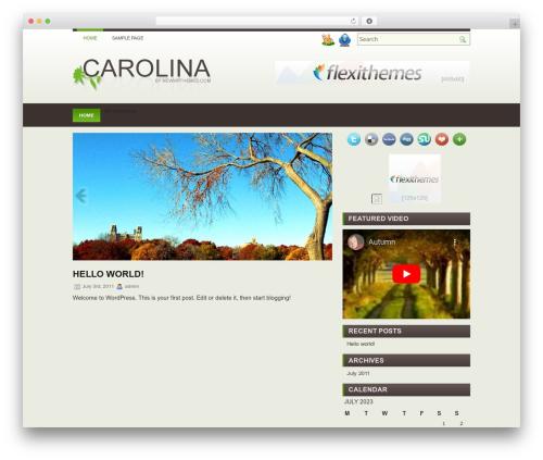 carolina WordPress theme - workinpharmacy.com