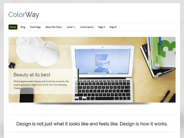 Colorway Child WordPress theme design