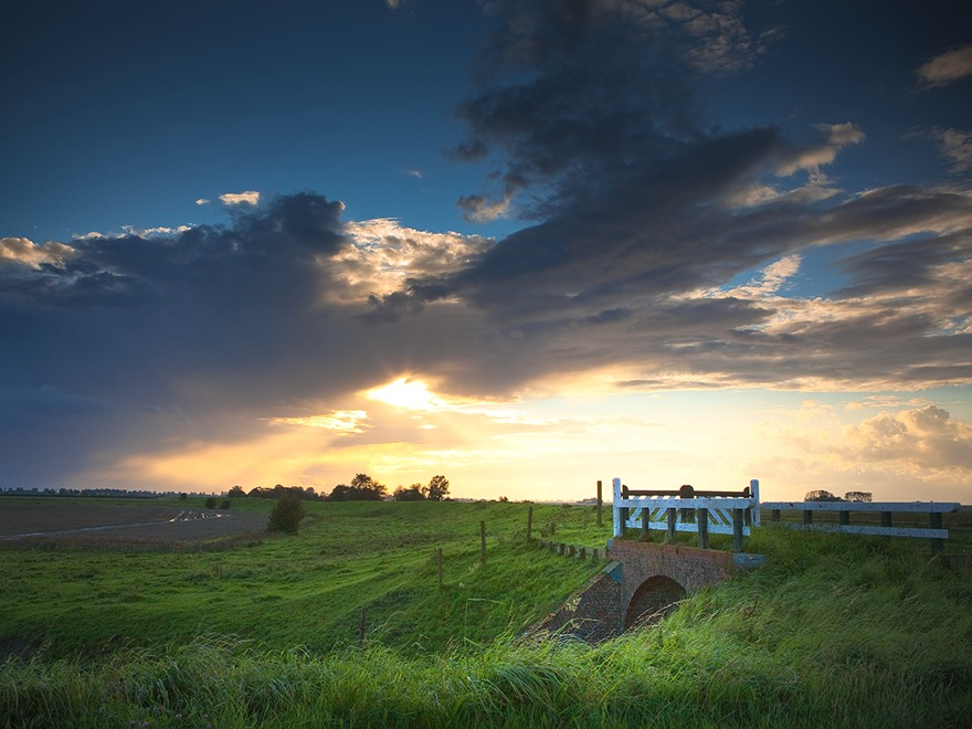 Music Club premium WordPress theme