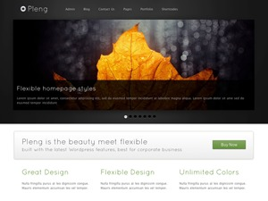 Pleng company WordPress theme