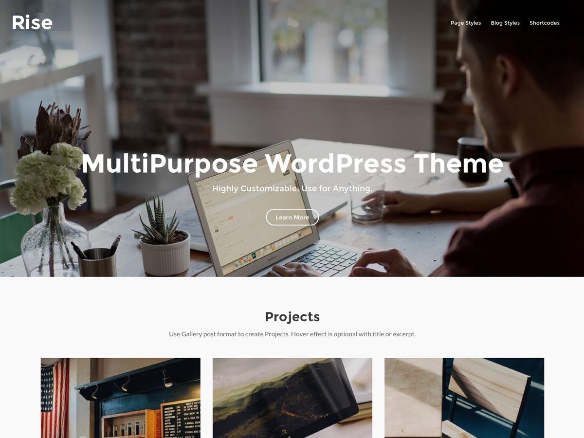riseWP best free WordPress theme
