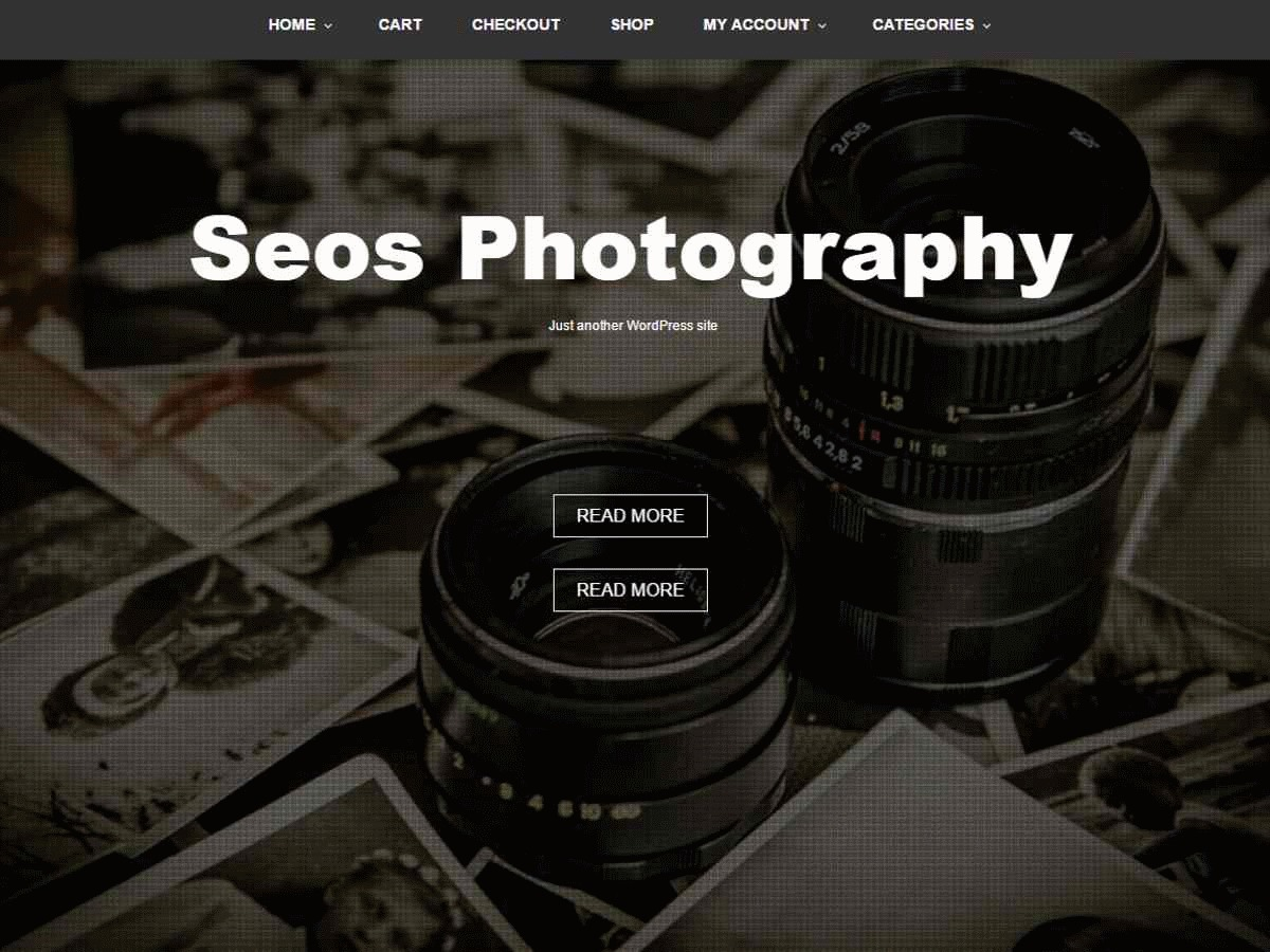 Seos Photography free WP theme
