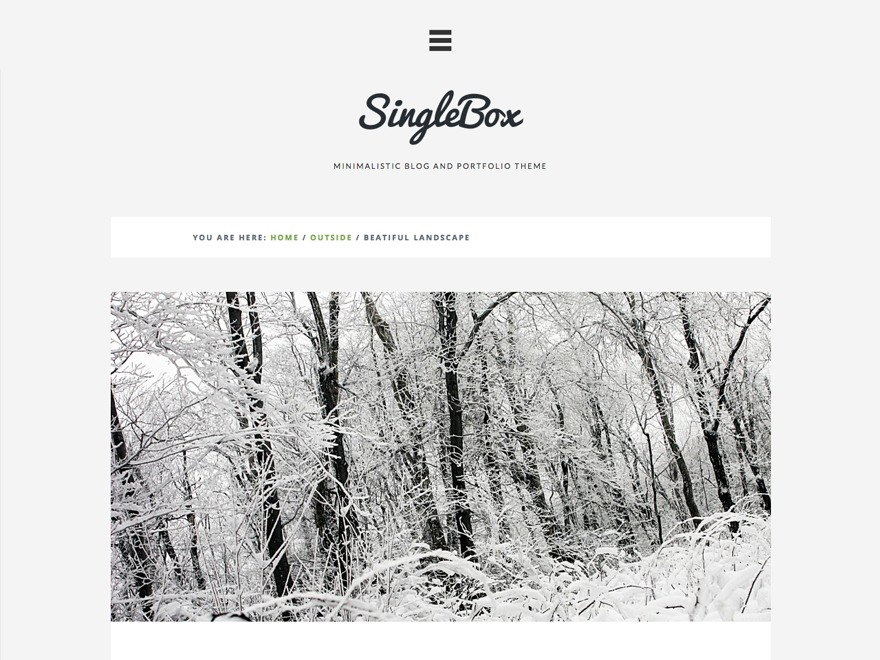 SingleBox personal blog WordPress theme