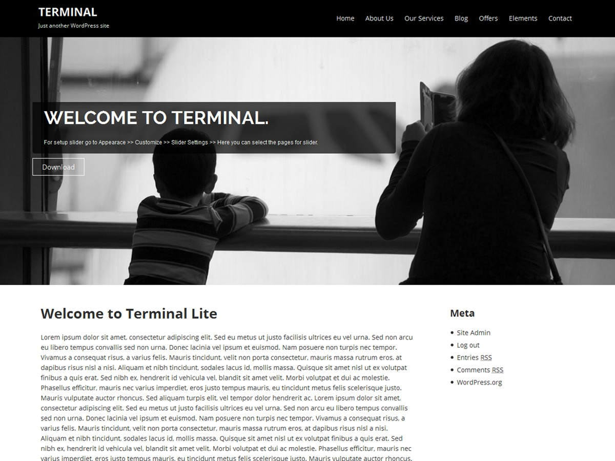 Terminal Lite theme free download