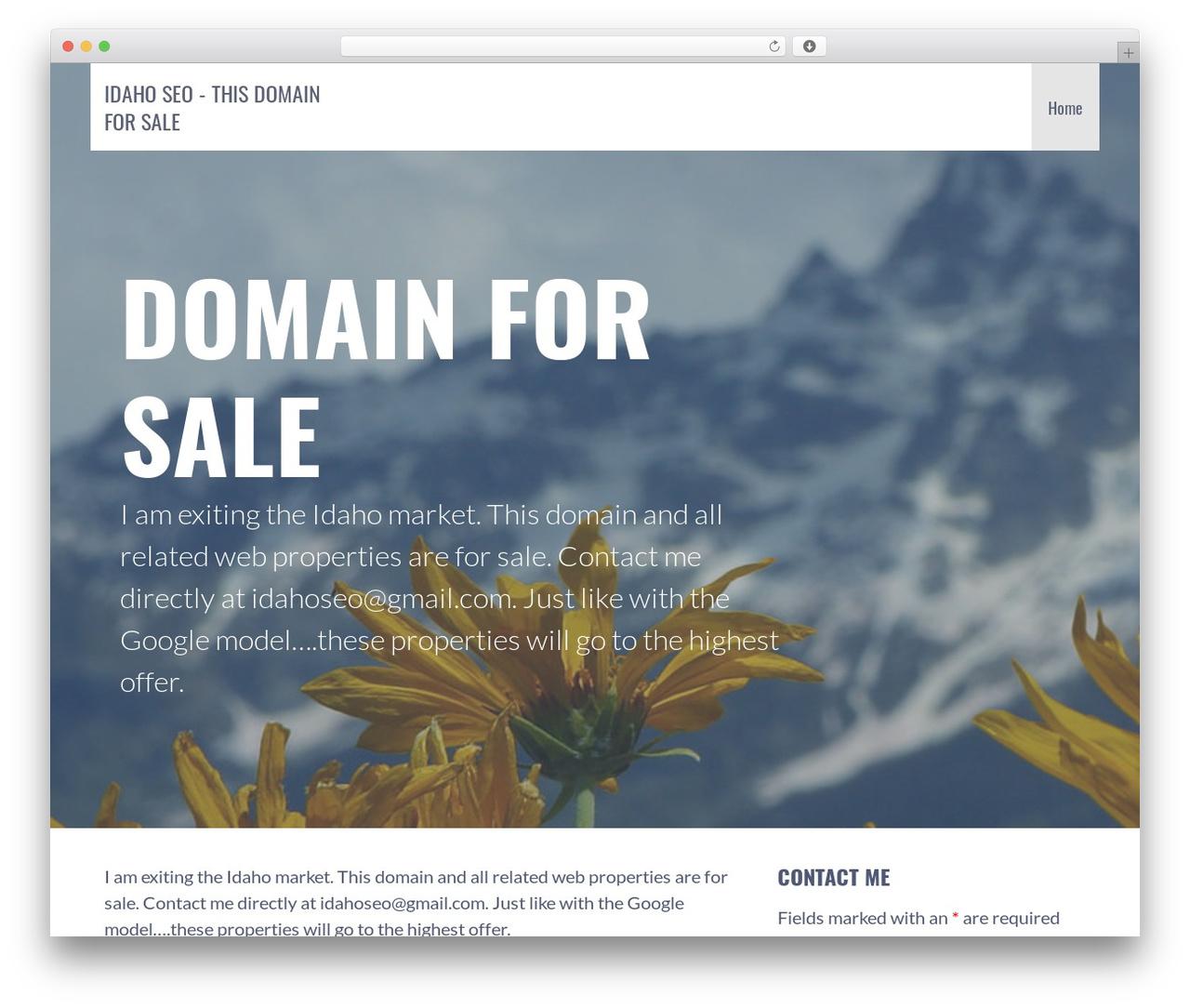 Primer best free WordPress theme - idaho-seo.com