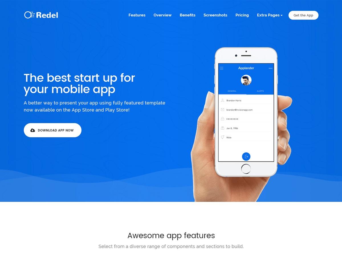 redel WordPress theme design