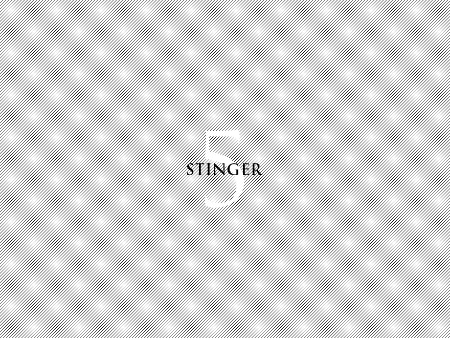stinger5child WordPress theme