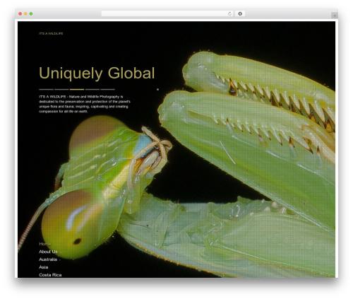 Agora wallpapers WordPress theme - itsawildlife.com.au