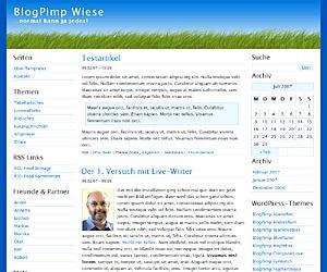 BlogPimp Wiese WordPress blog theme