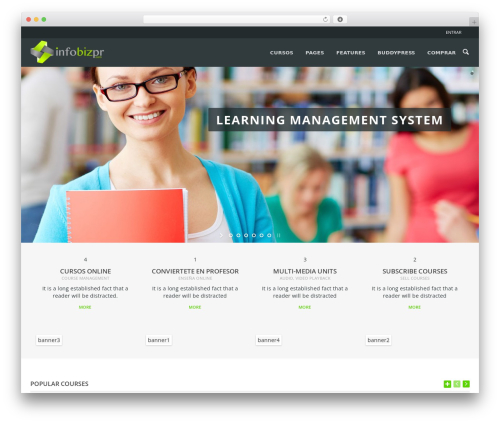 WPLMS WordPress template - infobizpr.com