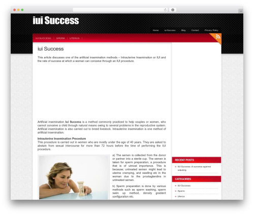 Colorbold WordPress page template - iuisuccess.net