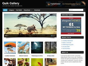 Quik Gallery wallpapers WordPress theme