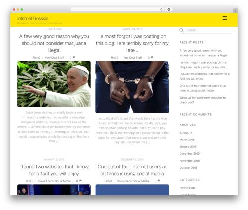WordPress theme Themify Ultra - internetgossips.com