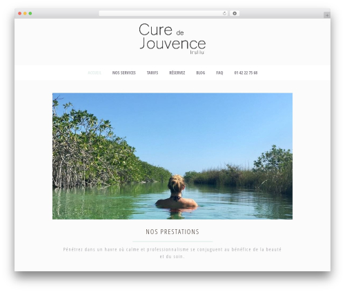 WordPress theme Dream Spa - institutcuredejouvence.com