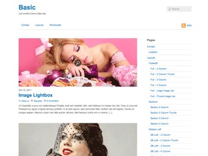 Base premium WordPress theme