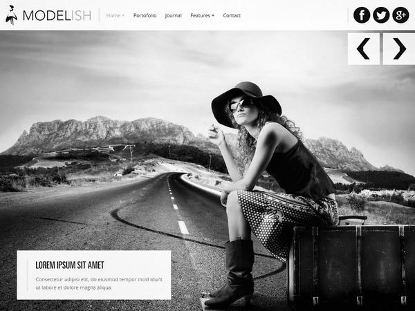 Best WordPress template Modelish