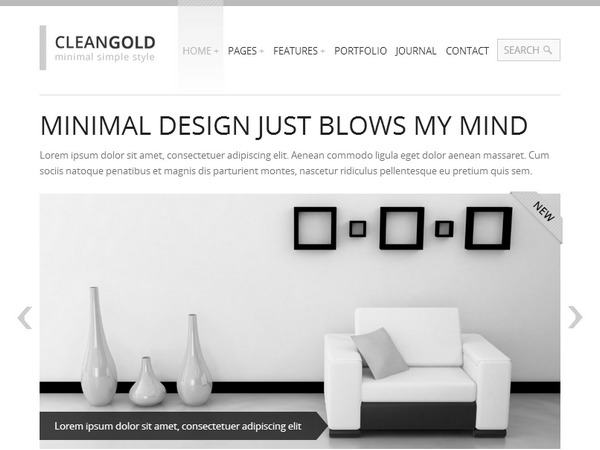 Best WordPress theme CleanGold
