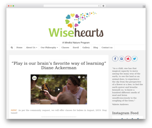 Coeur free WordPress theme - wisehearts.net