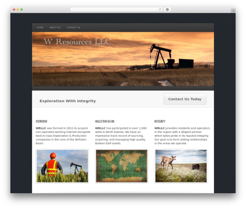 Complexity top WordPress theme - wresourcesllc.com