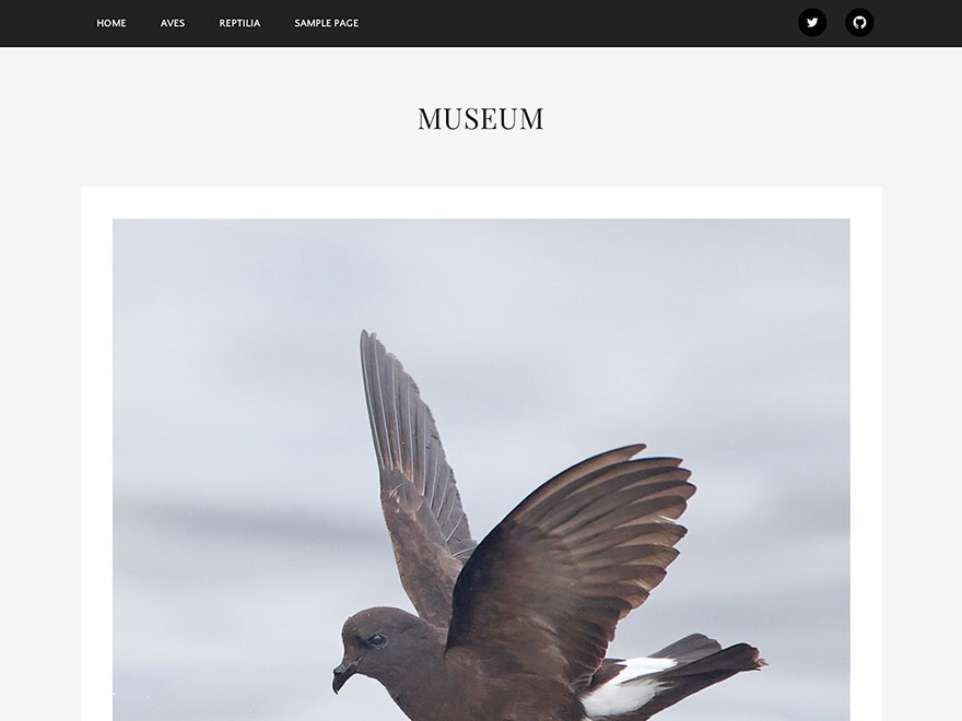 Museum WordPress gallery theme