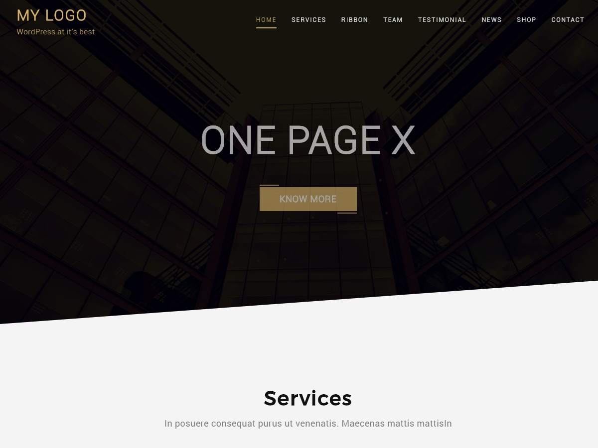 One Page X WordPress shop theme