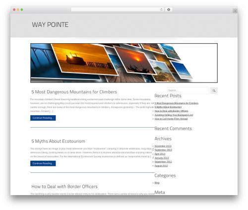 seoc-cleanonline WordPress travel theme - waypointe.com