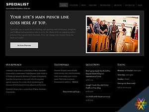 Specialist2 theme WordPress portfolio
