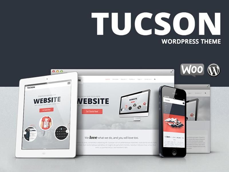 WP theme Tucson