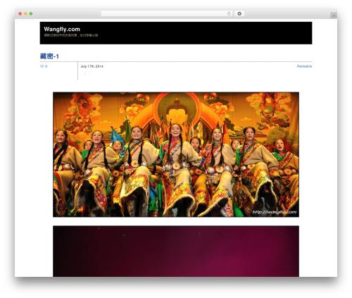 Zack 990 WP theme - wangfly.com