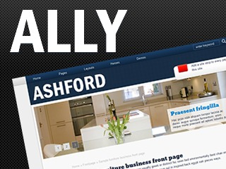 Ally for Ashford WordPress page template